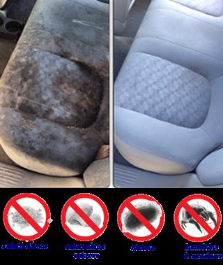 vapnet nettoyage cologique la vapeur en guadeloupe nettoyage automobile. Black Bedroom Furniture Sets. Home Design Ideas